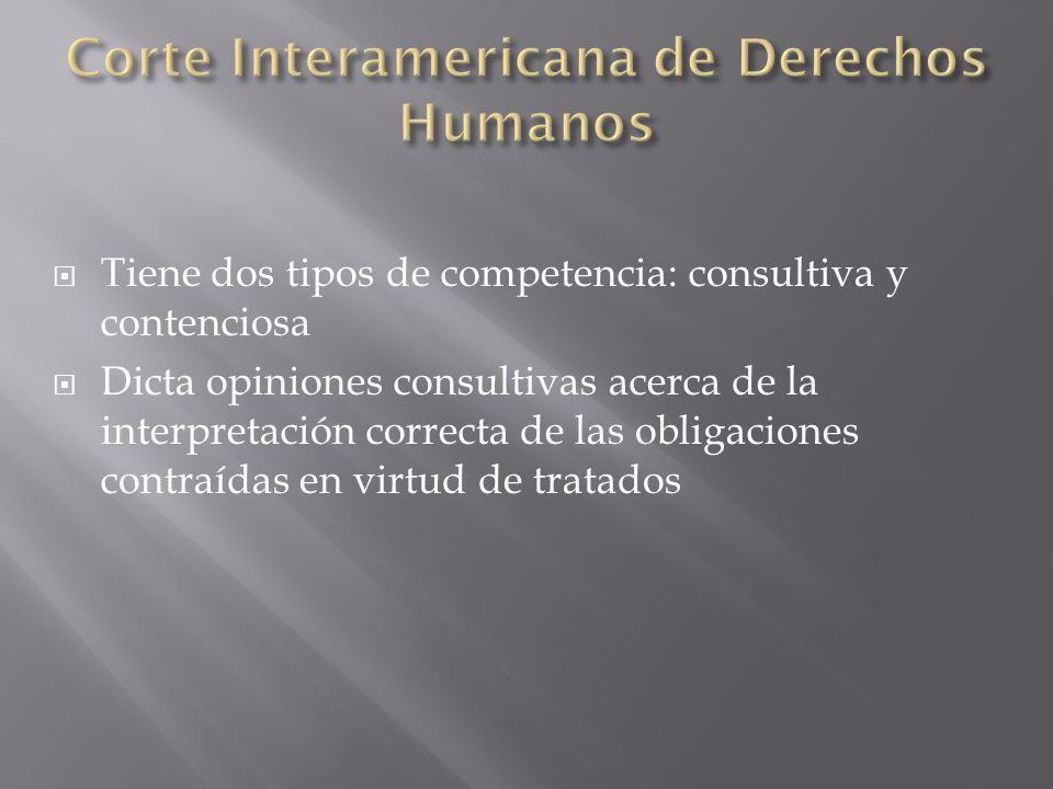 Tiene dos tipos de competencia: consultiva y contenciosa Dicta opiniones consultivas acerca de la interpretación correcta de las obligaciones contraídas en virtud de tratados