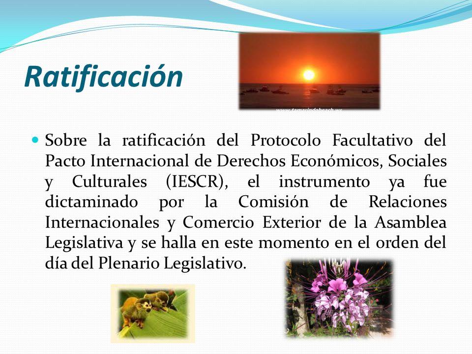 Ratificación Sobre la ratificación del Protocolo Facultativo del Pacto Internacional de Derechos Económicos, Sociales y Culturales (IESCR), el instrum