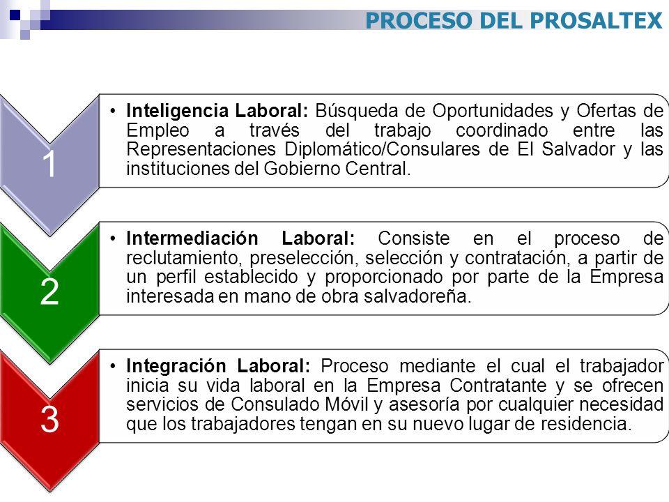 PROCESO DEL PROSALTEX 1 Inteligencia Laboral: Búsqueda de Oportunidades y Ofertas de Empleo a través del trabajo coordinado entre las Representaciones