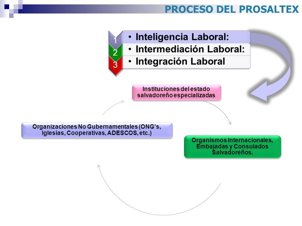 PROCESO DEL PROSALTEX 1 Inteligencia Laboral: 2 Intermediación Laboral: 3 Integración Laboral Instituciones del estado salvadoreño especializadas Orga