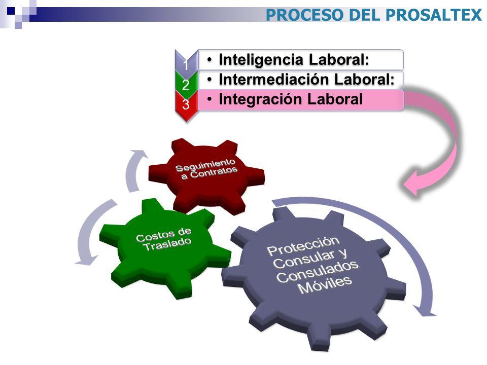 PROCESO DEL PROSALTEX 1 Inteligencia Laboral: 2 Intermediación Laboral: 3 Integración Laboral