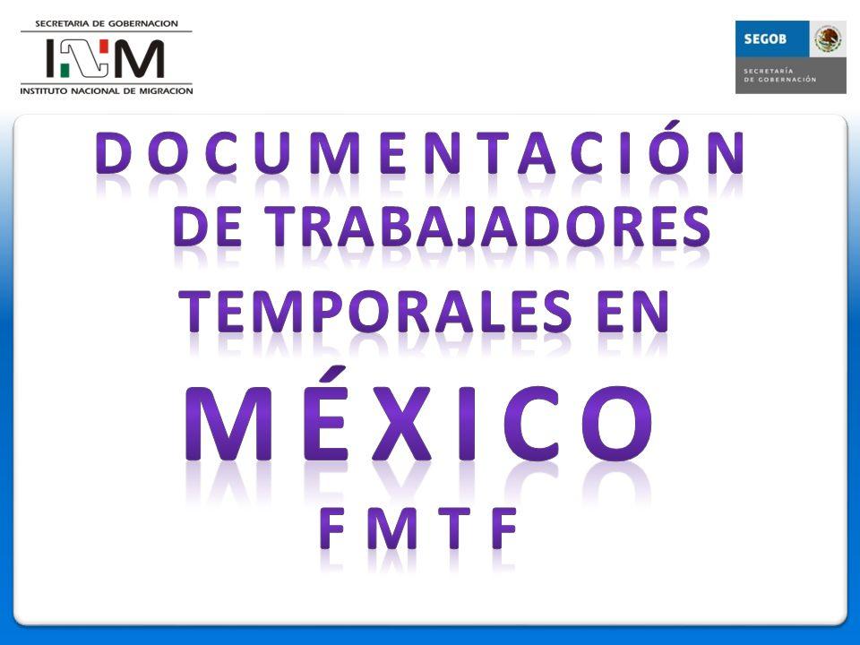 OBJETIVO Dar a conocer el mecanismo actual que se aplica en México para el ingreso ordenado y seguro de trabajadores temporales en el sur del país.