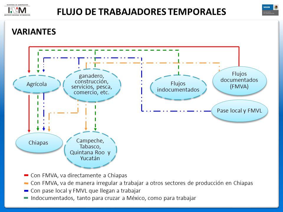 FLUJO DE TRABAJADORES TEMPORALES VARIANTES Pase local y FMVL Campeche, Tabasco, Quintana Roo y Yucatán Chiapas Flujos indocumentados Agrícola Con pase