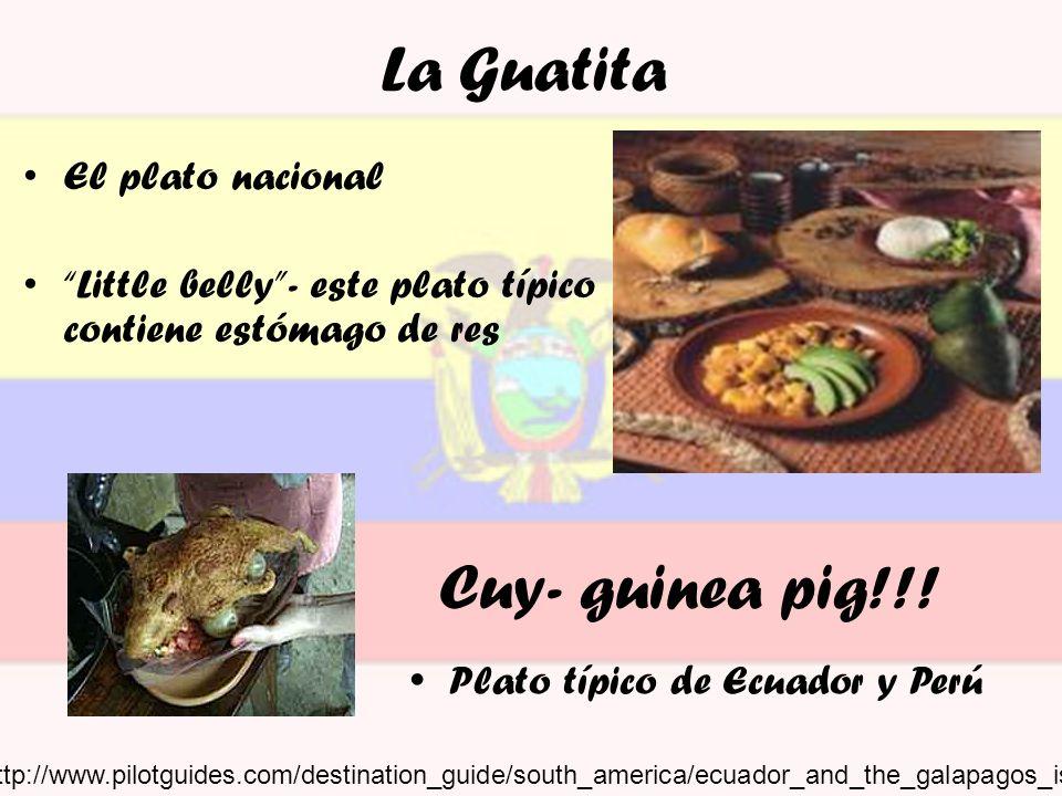 La Guatita El plato nacional Little belly- este plato típico contiene estómago de res Cuy- guinea pig!!! Plato típico de Ecuador y Perú http://www.pil