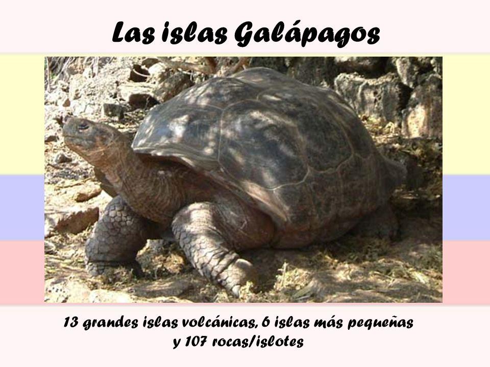 Las islas Galápagos 13 grandes islas volcánicas, 6 islas más pequeñas y 107 rocas/islotes