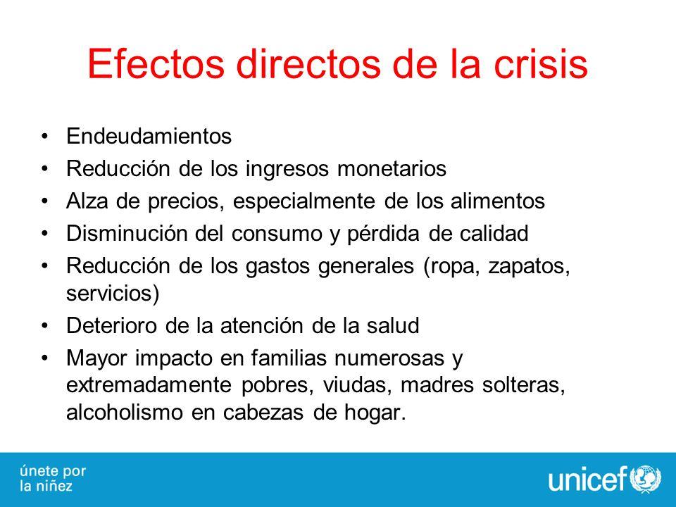 Efectos directos de la crisis Endeudamientos Reducción de los ingresos monetarios Alza de precios, especialmente de los alimentos Disminución del cons