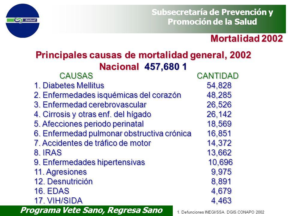 Programa Vete Sano, Regresa Sano Subsecretaría de Prevención y Promoción de la Salud 1. Defunciones INEGI/SSA. DGIS.CONAPO 2002 Mortalidad 2002 CAUSAS