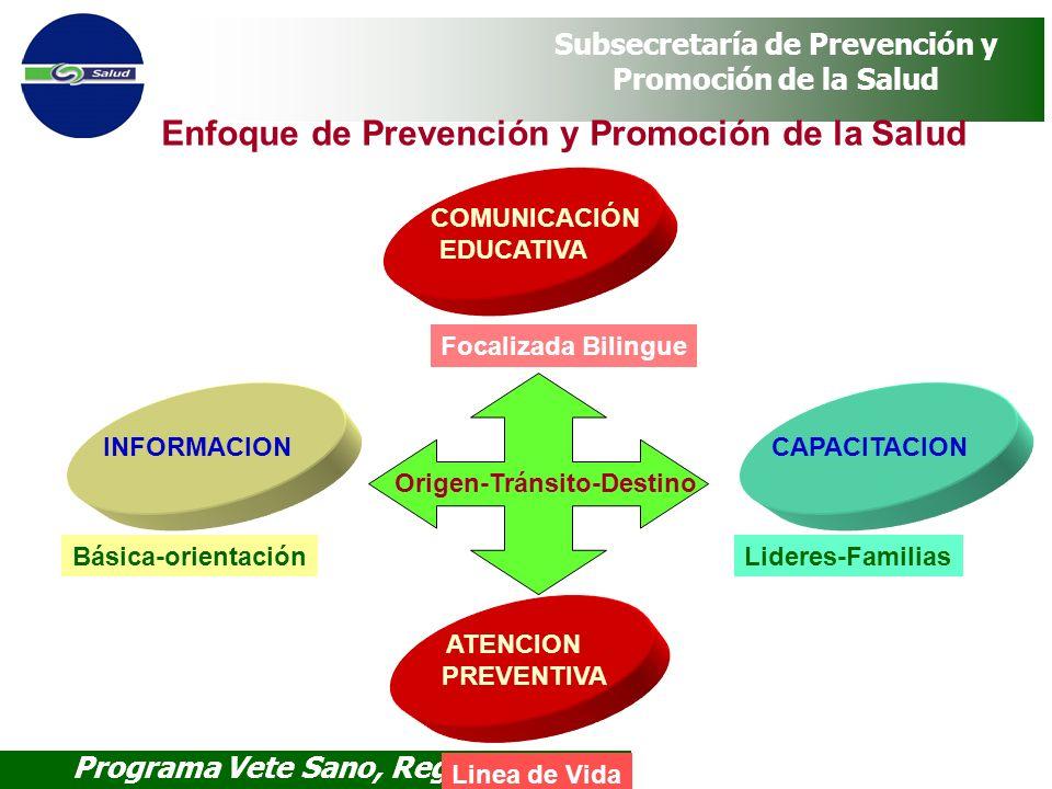 Programa Vete Sano, Regresa Sano Subsecretaría de Prevención y Promoción de la Salud Enfoque de Prevención y Promoción de la Salud INFORMACION Básica-