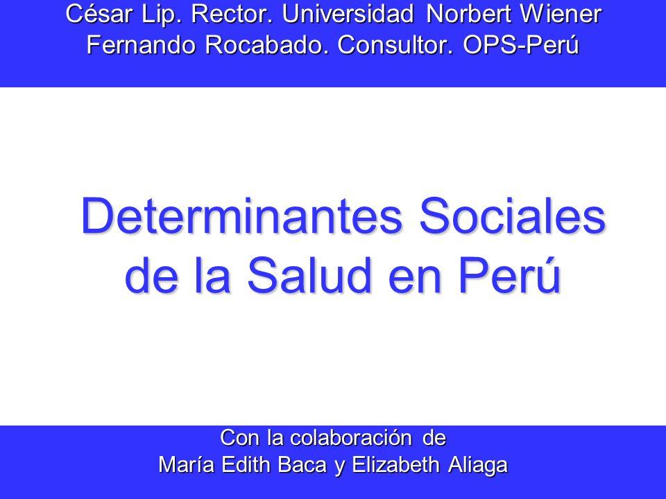 Determinantes Sociales de la Salud en Perú César Lip.