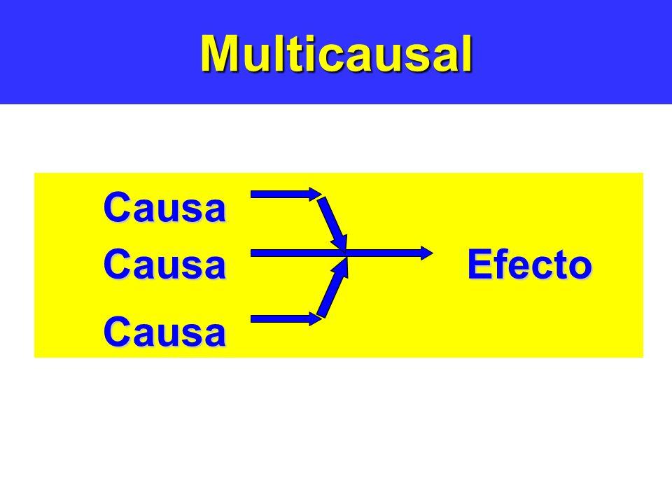 MulticausalCausaEfecto Causa Causa