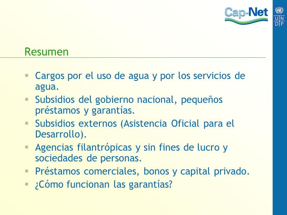 Resumen Cargos por el uso de agua y por los servicios de agua. Subsidios del gobierno nacional, pequeños préstamos y garantías. Subsidios externos (As