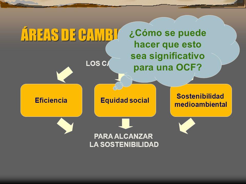 ÁREAS DE CAMBIO EN LA GRH Sostenibilidad medioambiental EficienciaEquidad social LOS CAMBIOS BUSCAN PARA ALCANZAR LA SOSTENIBILIDAD ¿Cómo se puede hac