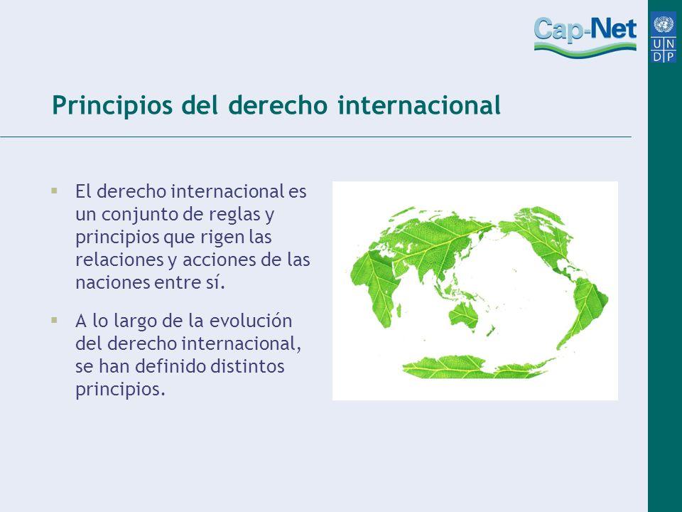 Principios del derecho internacional El derecho internacional es un conjunto de reglas y principios que rigen las relaciones y acciones de las naciones entre sí.