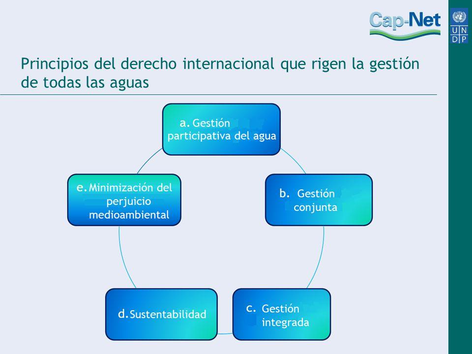 Principios del derecho internacional que rigen la gestión de todas las aguas