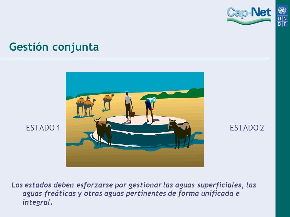 Gestión conjunta ESTADO 1 ESTADO 2 Los estados deben esforzarse por gestionar las aguas superficiales, las aguas freáticas y otras aguas pertinentes d