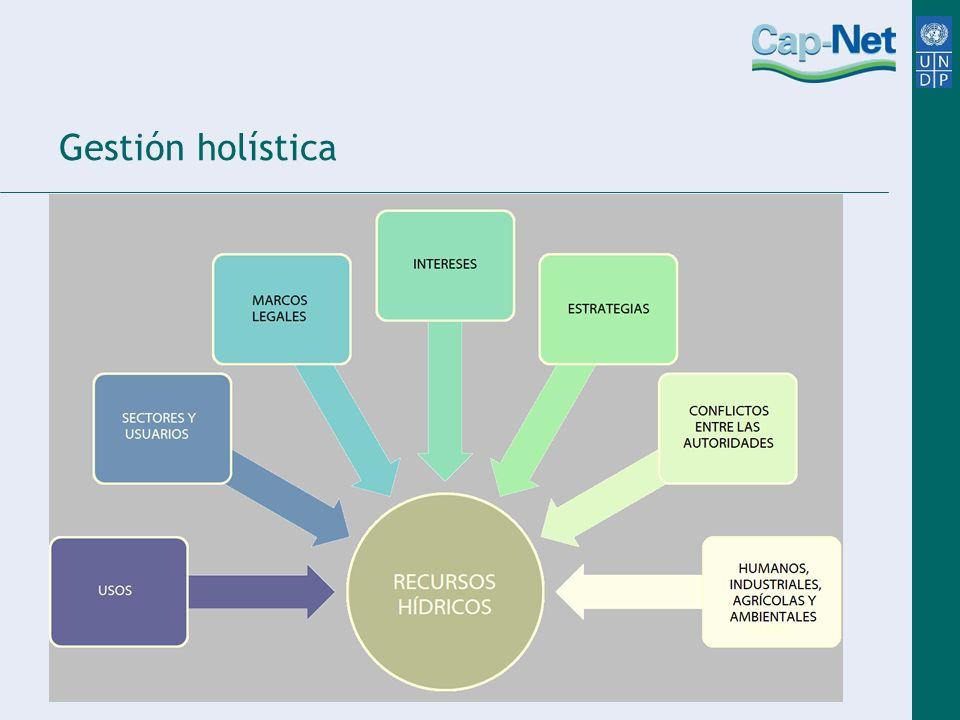 Gestión holística