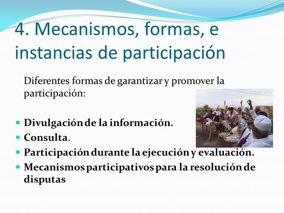 Diferentes formas de garantizar y promover la participación: Divulgación de la información. Consulta. Participación durante la ejecución y evaluación.