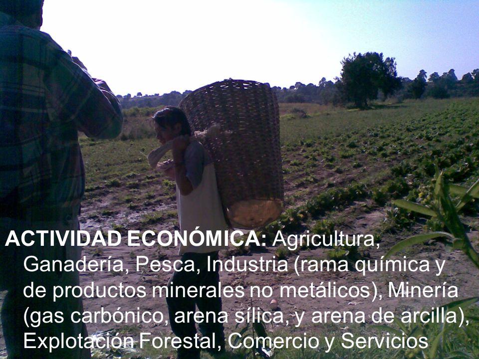 ACTIVIDAD ECONÓMICA: Agricultura, Ganadería, Pesca, Industria (rama química y de productos minerales no metálicos), Minería (gas carbónico, arena síli