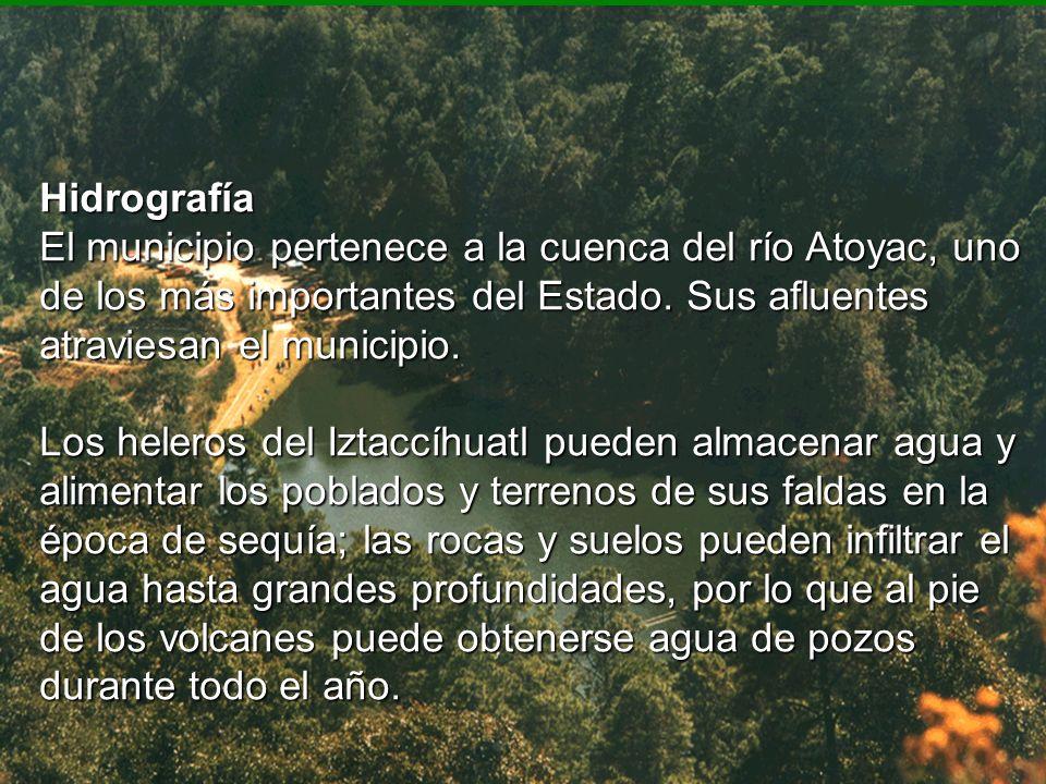 Hidrografía El municipio pertenece a la cuenca del río Atoyac, uno de los más importantes del Estado. Sus afluentes atraviesan el municipio. Los heler