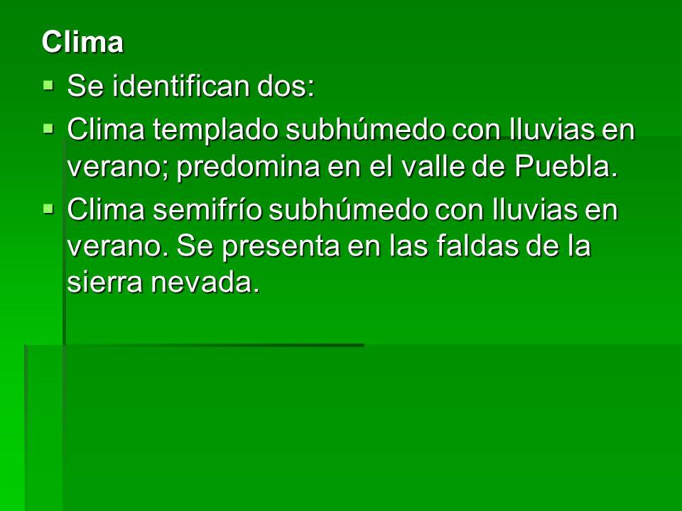 Clima Se identifican dos: Se identifican dos: Clima templado subhúmedo con lluvias en verano; predomina en el valle de Puebla. Clima templado subhúmed