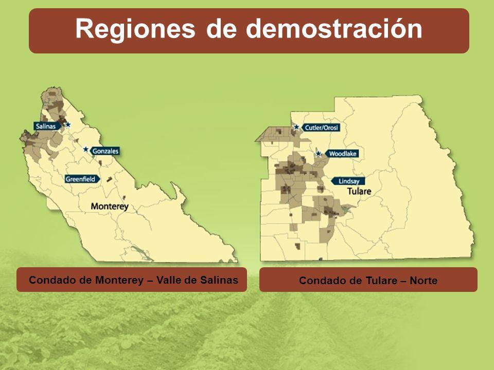 Intensive Sites Regiones de demostración Condado de Tulare – Norte Condado de Monterey – Valle de Salinas