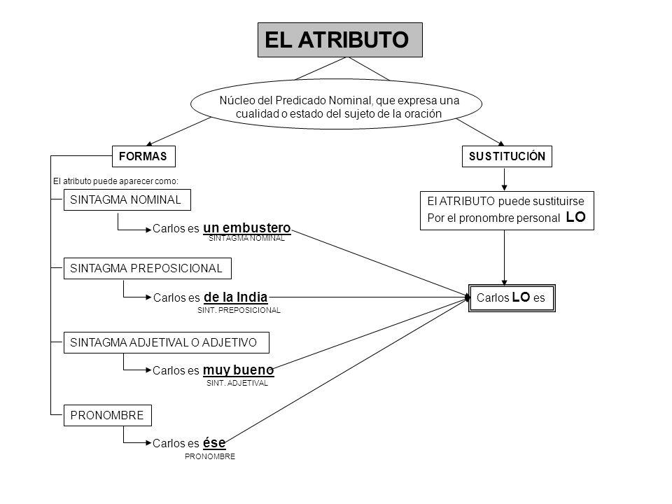 EL ATRIBUTO Núcleo del Predicado Nominal, que expresa una cualidad o estado del sujeto de la oración FORMASSUSTITUCIÓN SINTAGMA NOMINAL SINTAGMA PREPO