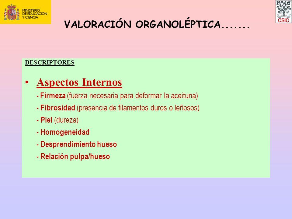 DESCRIPTORES Aspectos Internos - Firmeza (fuerza necesaria para deformar la aceituna) - Fibrosidad (presencia de filamentos duros o leñosos) - Piel (d