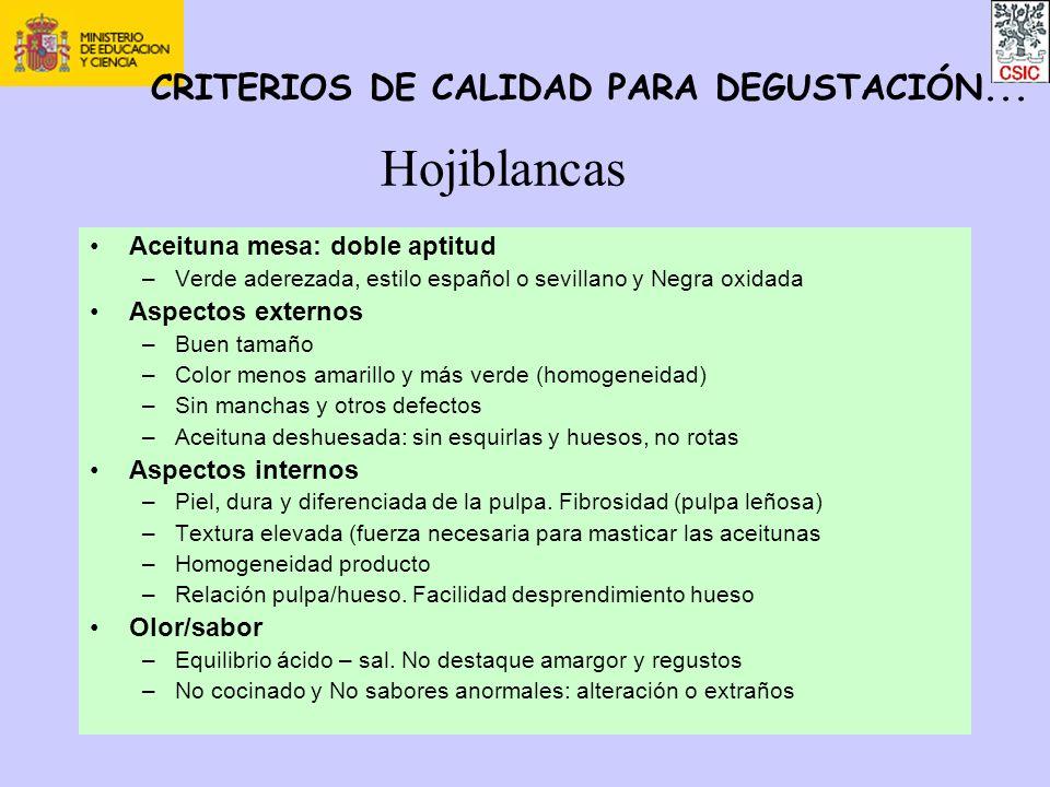 Hojiblancas Aceituna mesa: doble aptitud –Verde aderezada, estilo español o sevillano y Negra oxidada Aspectos externos –Buen tamaño –Color menos amar