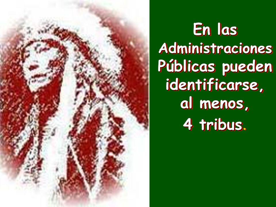En las Administraciones Públicas pueden identificarse, al menos, 4 tribus 4 tribus.