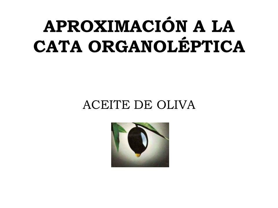 APROXIMACIÓN A LA CATA ORGANOLÉPTICA ACEITE DE OLIVA