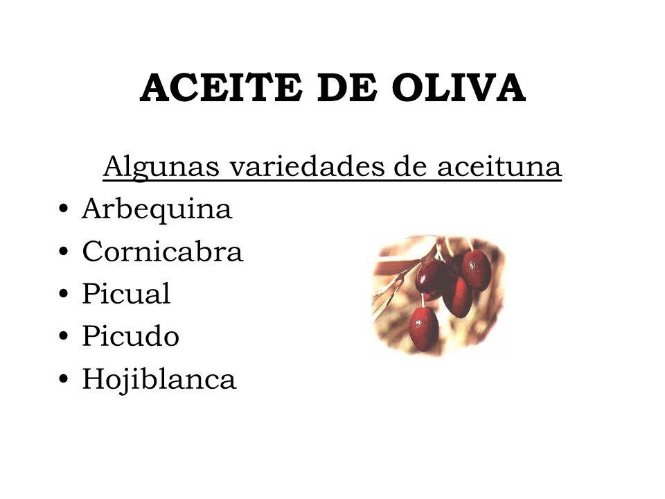 ACEITE DE OLIVA Algunas variedades de aceituna Arbequina Cornicabra Picual Picudo Hojiblanca