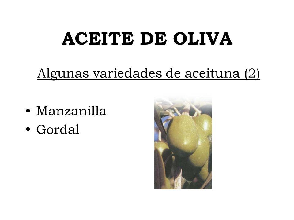 ACEITE DE OLIVA Algunas variedades de aceituna (2) Manzanilla Gordal