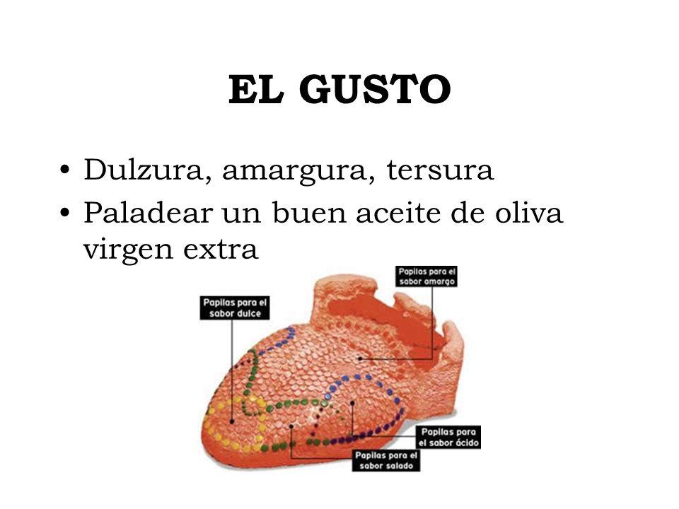 EL GUSTO Dulzura, amargura, tersura Paladear un buen aceite de oliva virgen extra