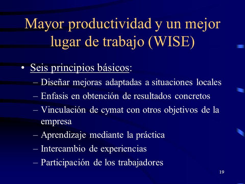 18 Mayor productividad y un mejor lugar de trabajo (WISE) Estrategias: –Asesoramiento práctico –Identificación y aplicación de soluciones de bajo costo –Mejoras en cymat, calidad y productividad –Fomento de la asociatividad entre empresas