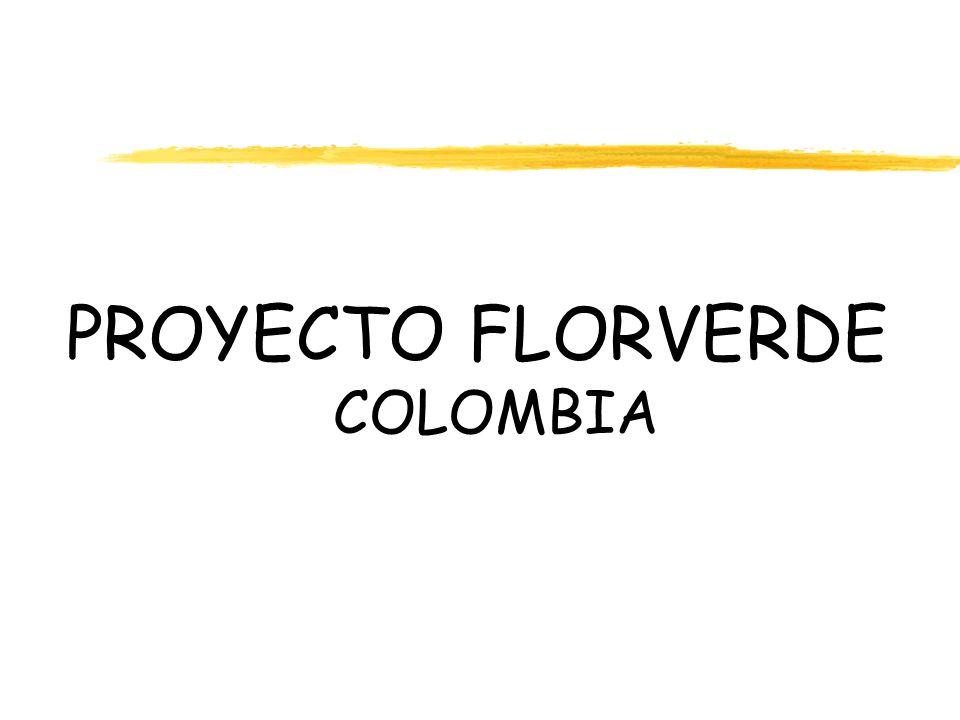 Programa especial de atención integral de la salud y del ambiente en el cual laboran los trabajadores del sector Floricultor en Colombia.