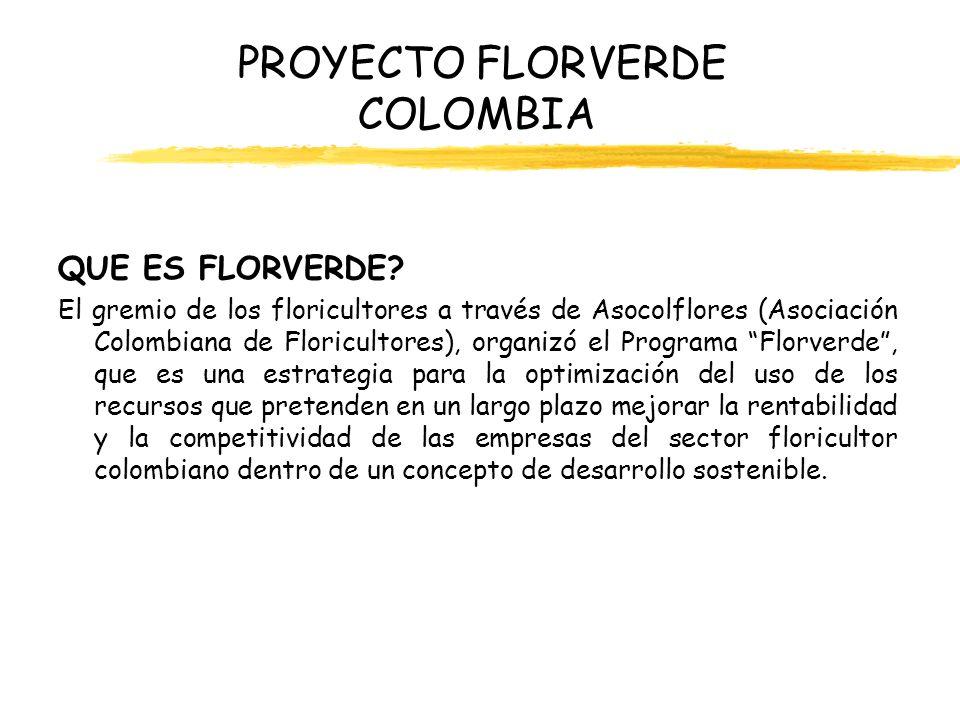 PROYECTO FLORVERDE COLOMBIA QUE ES FLORVERDE? El gremio de los floricultores a través de Asocolflores (Asociación Colombiana de Floricultores), organi