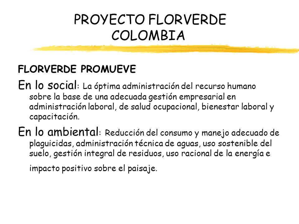 PROYECTO FLORVERDE COLOMBIA FLORVERDE PROMUEVE En lo social : La óptima administración del recurso humano sobre la base de una adecuada gestión empres