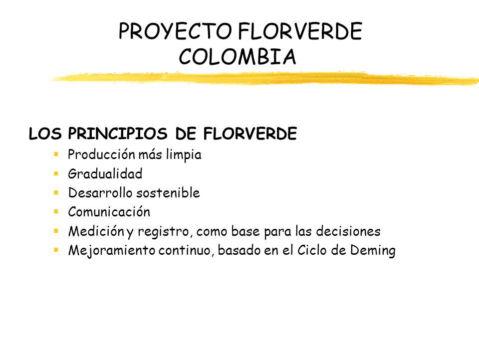 PROYECTO FLORVERDE COLOMBIA LOS PRINCIPIOS DE FLORVERDE Producción más limpia Gradualidad Desarrollo sostenible Comunicación Medición y registro, como