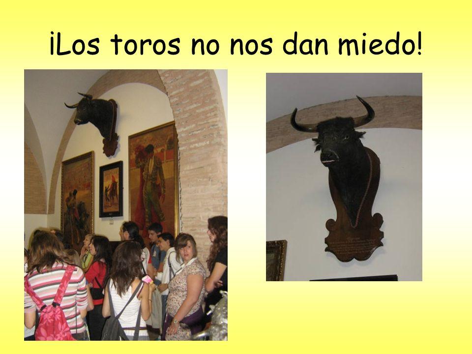 ¡Los toros no nos dan miedo!