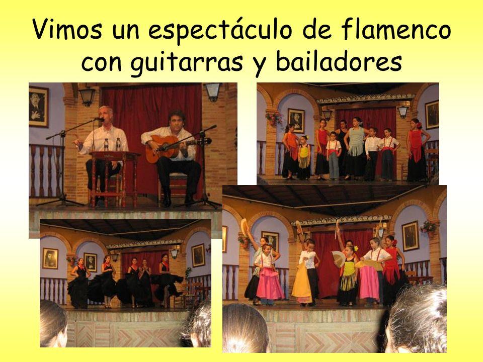 Vimos un espectáculo de flamenco con guitarras y bailadores