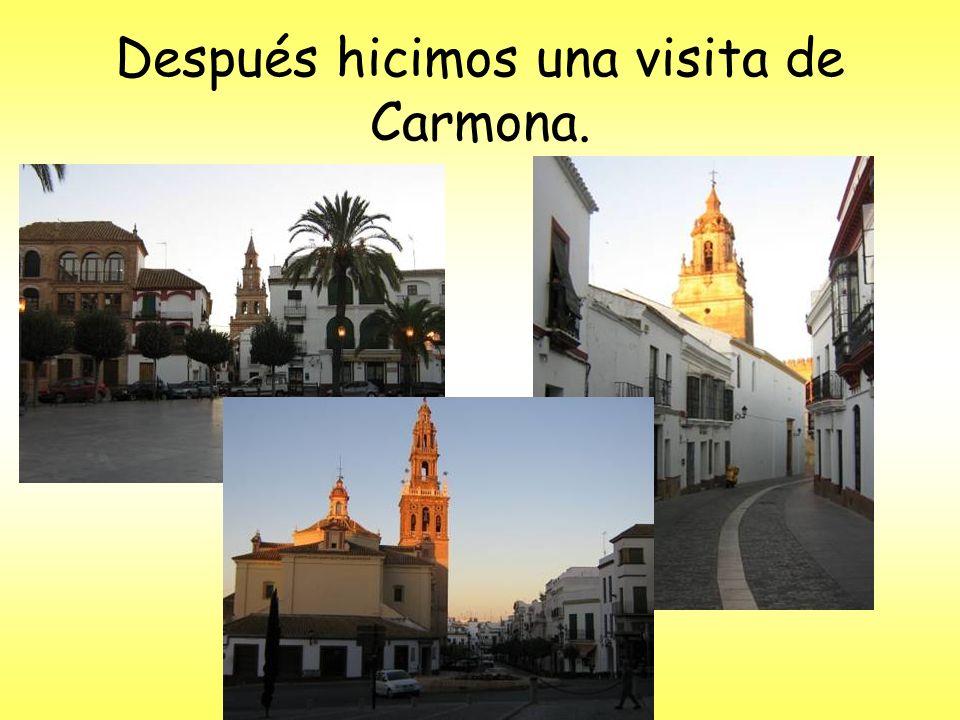 Después hicimos una visita de Carmona.
