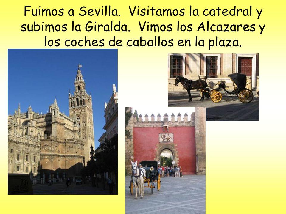 Fuimos a Sevilla. Visitamos la catedral y subimos la Giralda.