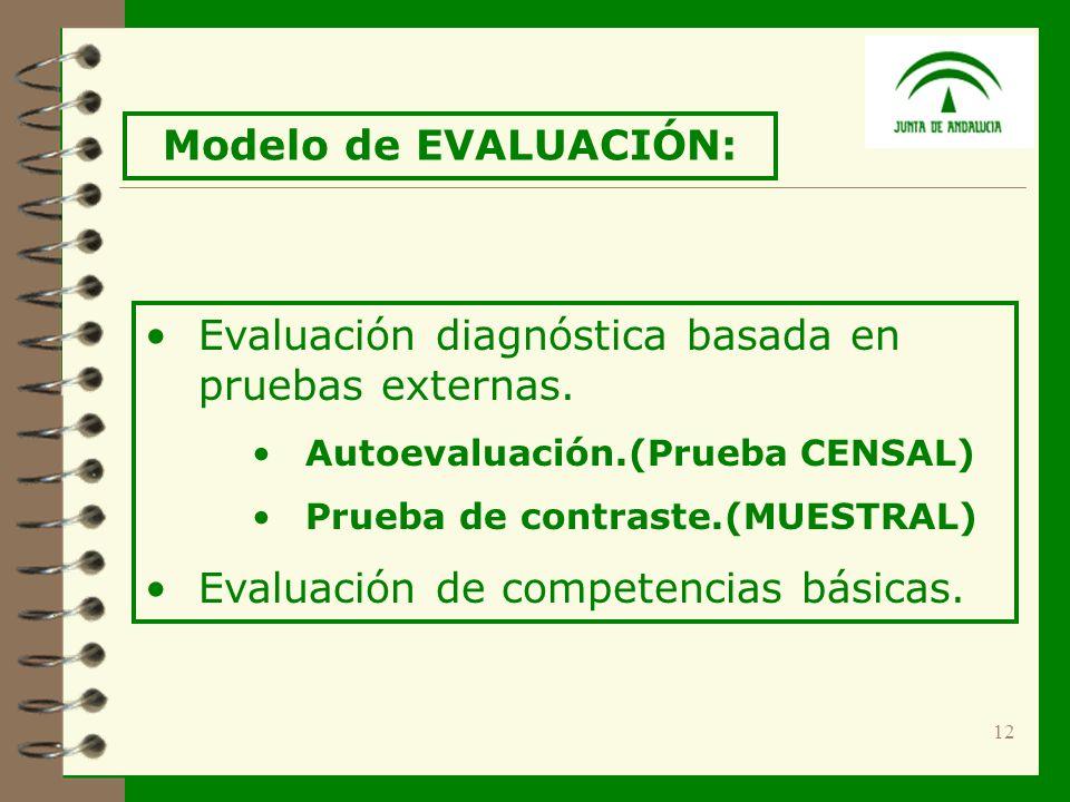 12 Evaluación diagnóstica basada en pruebas externas.