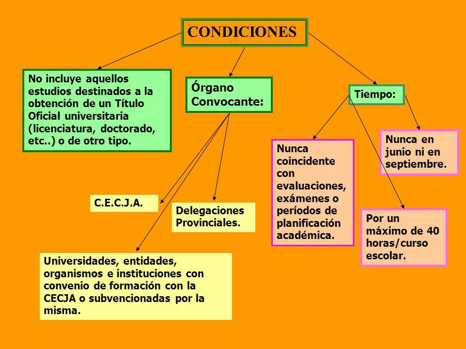 CONDICIONES No incluye aquellos estudios destinados a la obtención de un Título Oficial universitaria (licenciatura, doctorado, etc..) o de otro tipo.