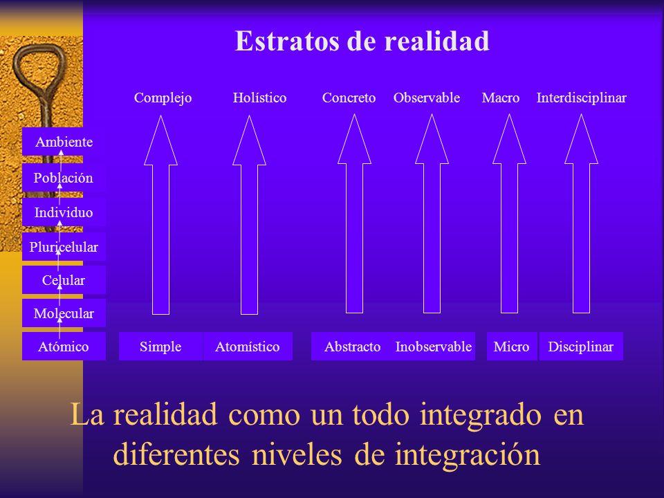La realidad como un todo integrado en diferentes niveles de integración Estratos de realidad ComplejoHolísticoConcretoObservableMacroInterdisciplinar