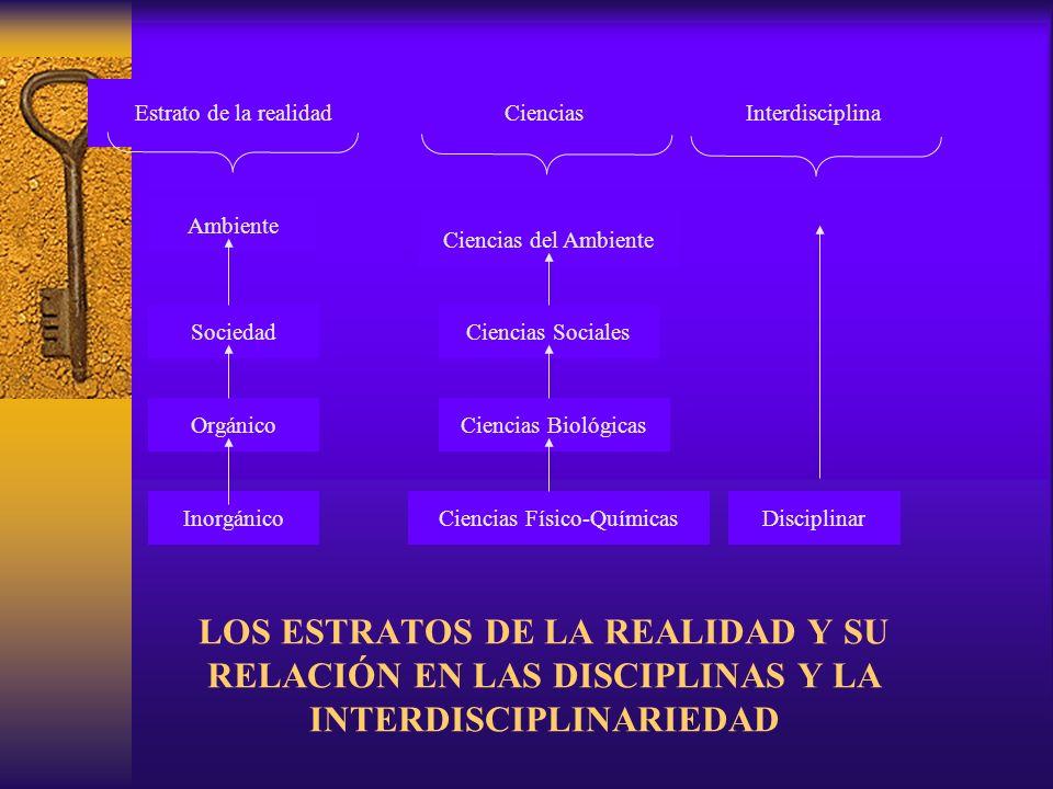 LOS ESTRATOS DE LA REALIDAD Y SU RELACIÓN EN LAS DISCIPLINAS Y LA INTERDISCIPLINARIEDAD Estrato de la realidadCienciasInterdisciplina Ambiente Socieda
