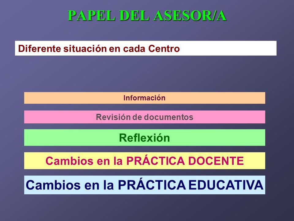 PAPEL DEL ASESOR/A Diferente situación en cada Centro Información Revisión de documentos Reflexión Cambios en la PRÁCTICA DOCENTE Cambios en la PRÁCTI