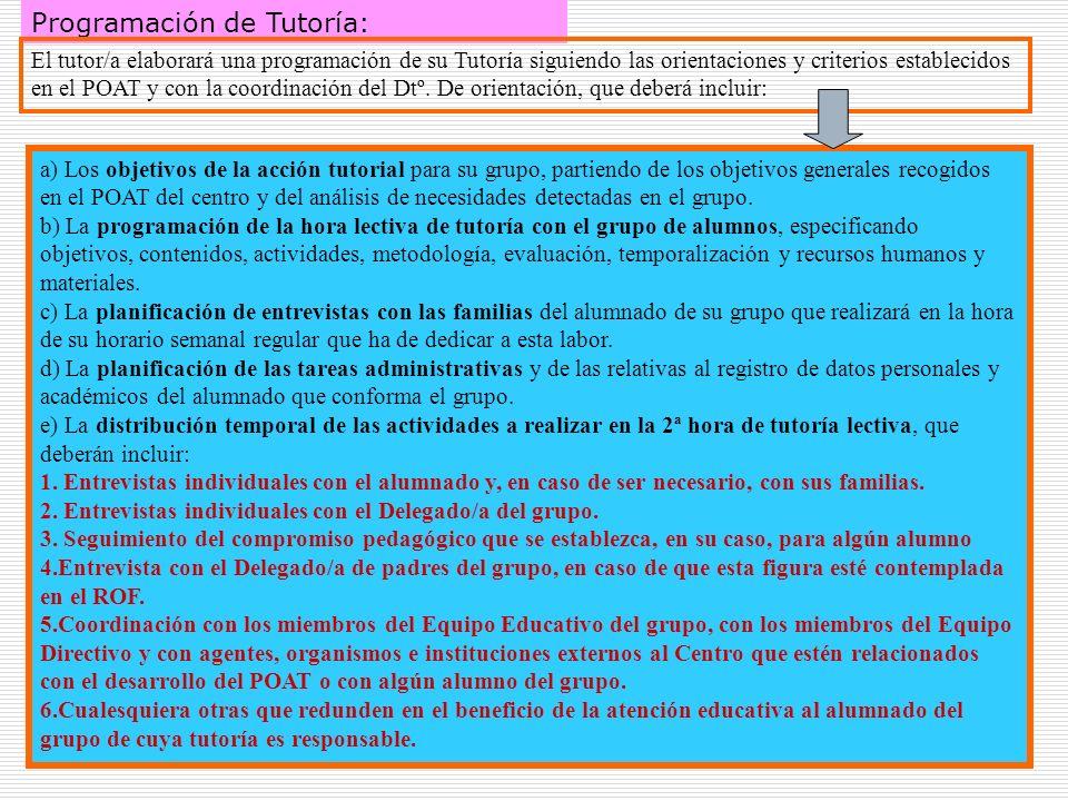 29 Programación de Tutoría: El tutor/a elaborará una programación de su Tutoría siguiendo las orientaciones y criterios establecidos en el POAT y con