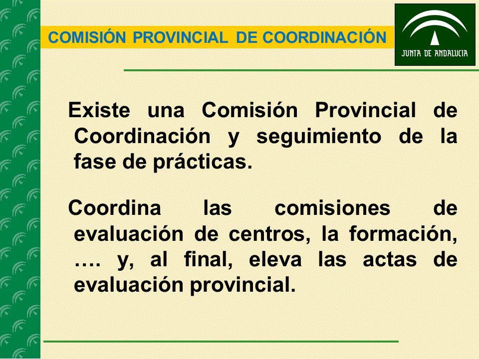 COMISIÓN PROVINCIAL DE COORDINACIÓN Existe una Comisión Provincial de Coordinación y seguimiento de la fase de prácticas. Coordina las comisiones de e