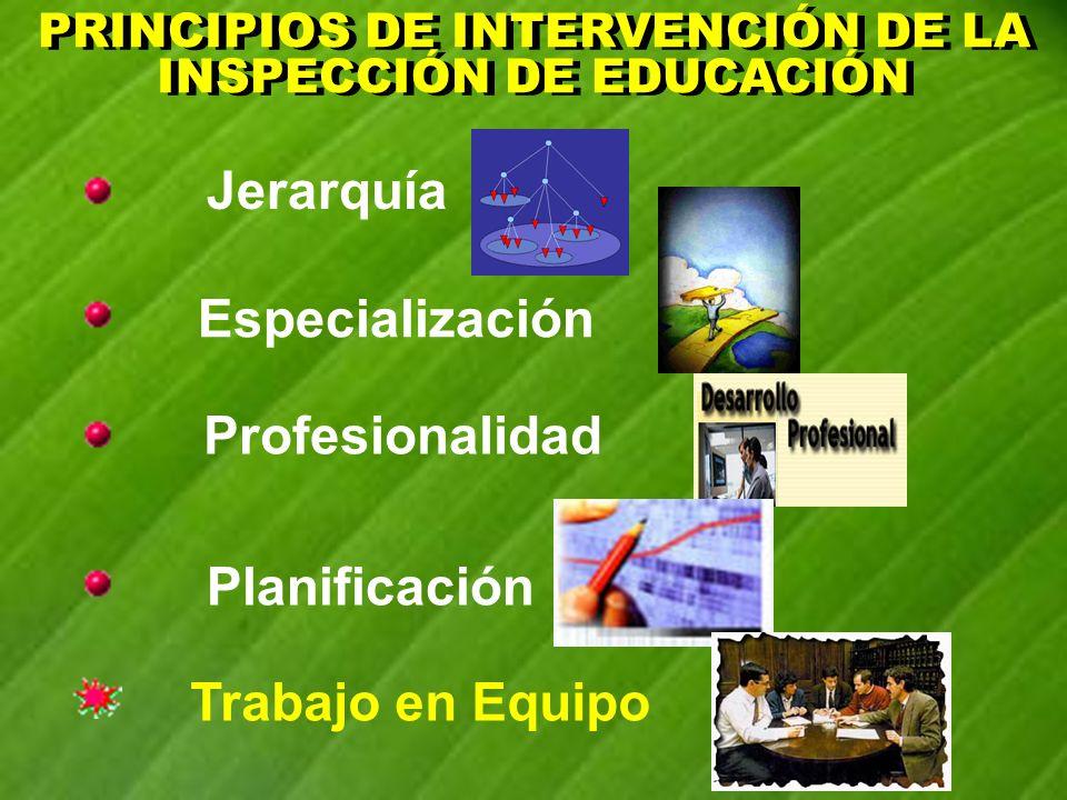 PRINCIPIOS DE INTERVENCIÓN (1) PRINCIPIOS DE INTERVENCIÓN (1) Jerarquía Jerarquía que alude a la dependencia orgánica y funcional de la inspección, que se recoge en el decreto citado, y a las propias actuaciones, establecidas en el Plan General de Actuación de la Inspección en Andalucía (prioritarias, homologadas y otras del marco general) ORGÁNICAFUNCIONAL